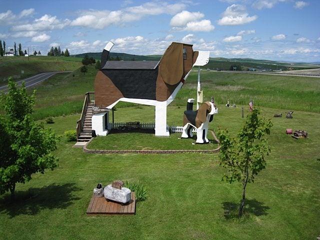 Dog Back Park Inn - Idaho