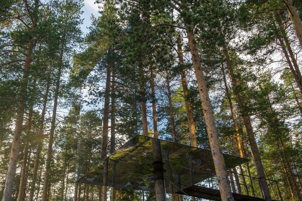 Tree Hotel - Sweden