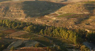 Rioja: A Wine Route
