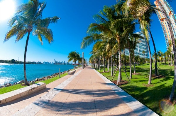 Five Best Places to Spot Celebrities in Miami | Miami New ...