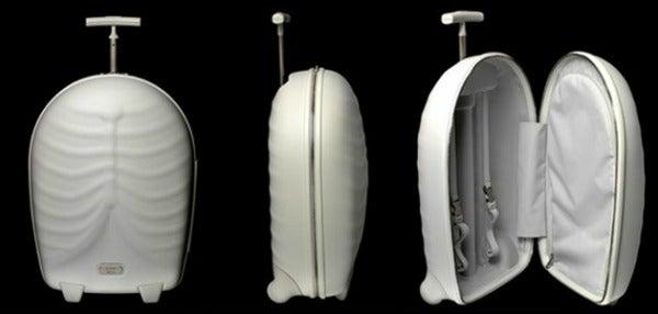 alexander mcqueen samsonite luggage