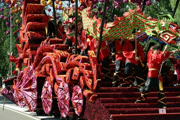 flower parade netherlands