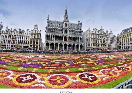 flower carpet brussels belgium