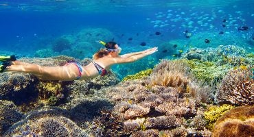 The World's Best Places to Snorkel