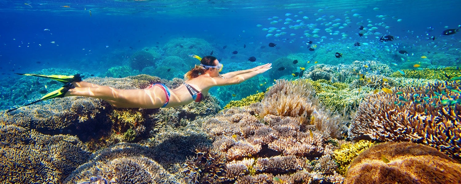The Best Snorkeling Spots in the World The Best Snorkeling Spots in the World new picture