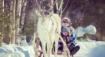 20 things to do at Santa Clauses Village in Rovaniemi
