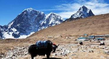 Responsible Tourism in the Himalayas