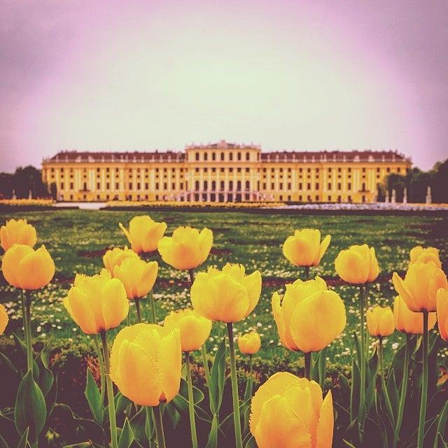 Schönbrunn Palazzo