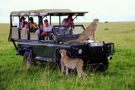 An African Safari Tour