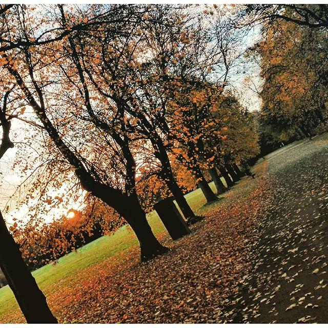 Parque de Platt Fields, Manchester