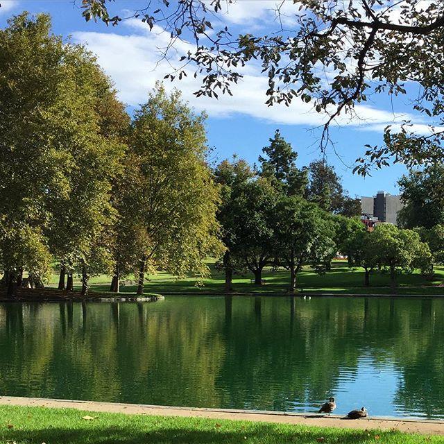 adelaide-parks