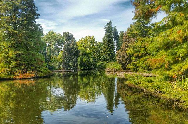 jardin botánico de adelaida