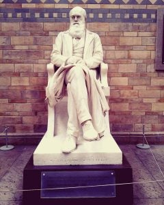 a statue of charles darwin