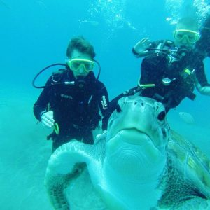 divers and a turtle in tenerife spain
