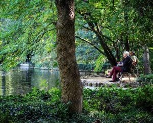 old men sitting at a lake at parque del capricho madrid
