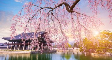 20 of the Most Beautiful Places to Visit in Spring