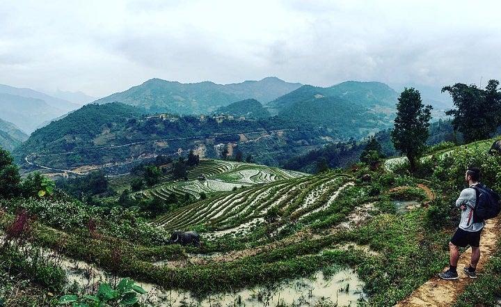 Tommy Walker rice terraces sapa vietnam
