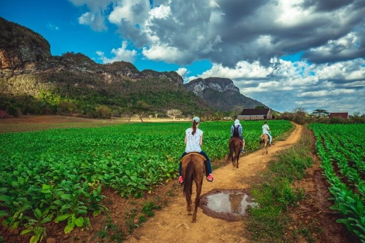 horse riding at vinales - cuba