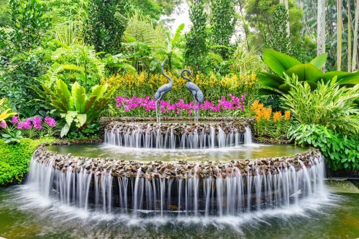 Singapore Botanical -Gardens