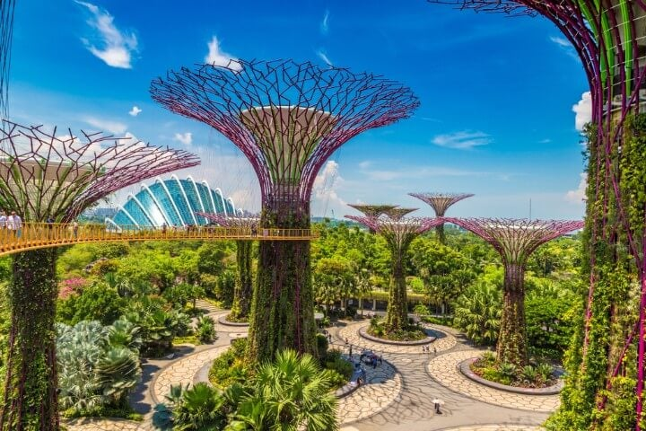 gardens by the bay _ singapore