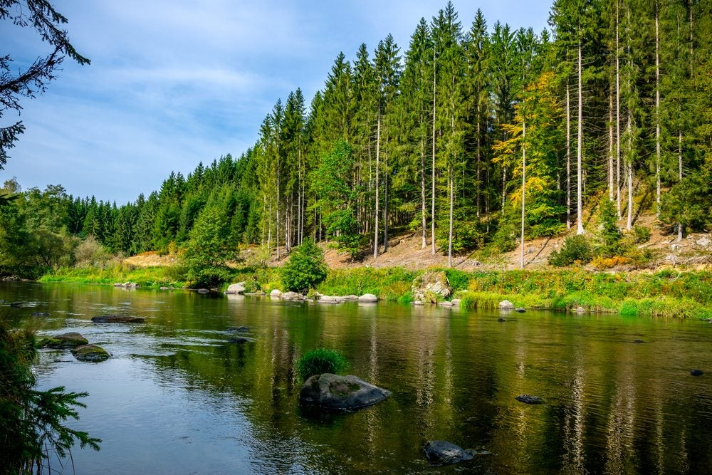 River in the Bohemian Forest