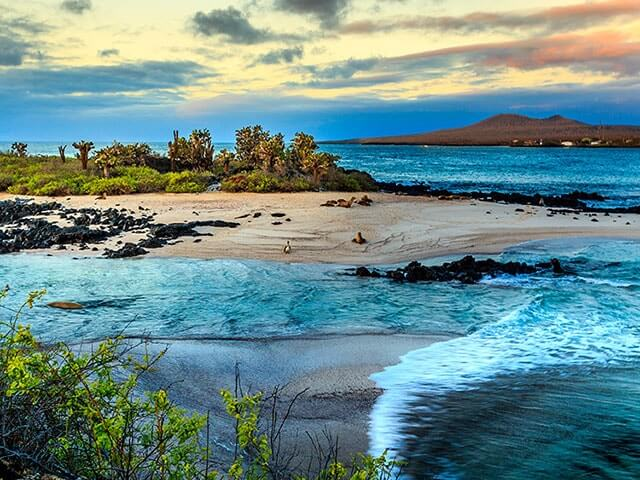 Book your holiday to Galapagos Islands with onefront-EDreams